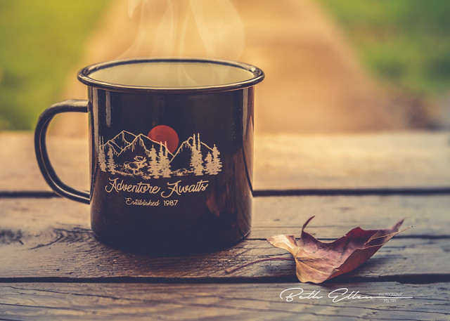 ~Crisp air, pretty leaves, sweater and boots, football, pumpkins and coffee. I love fall!