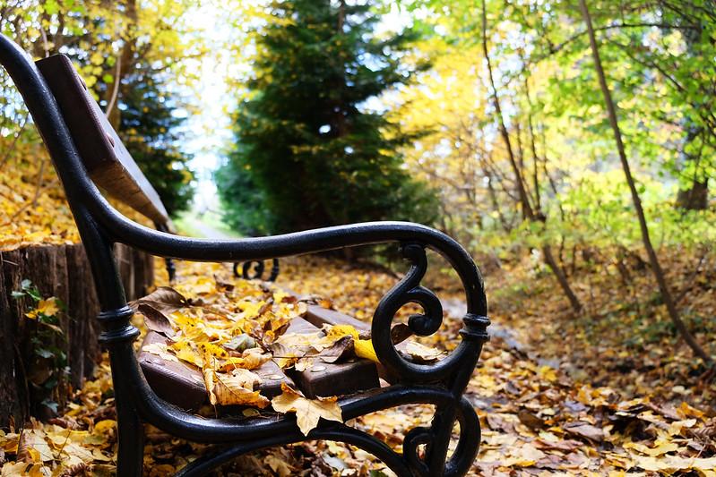 Fall in Hungary