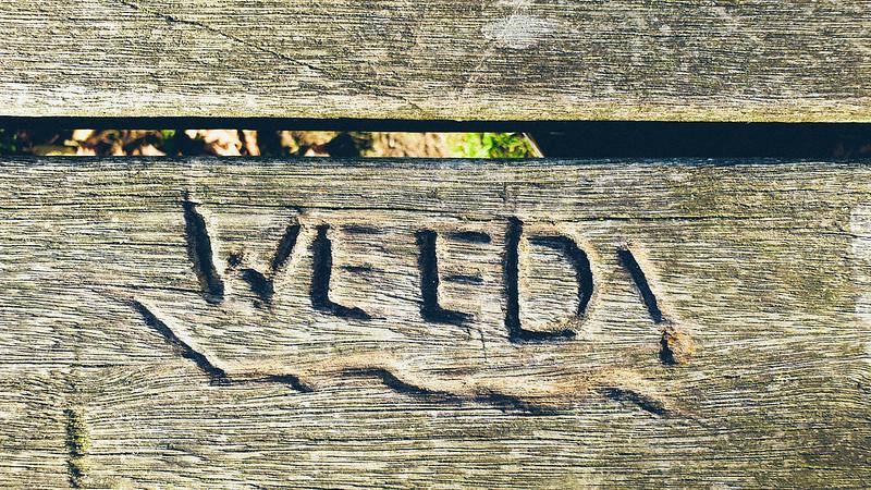 WEED!