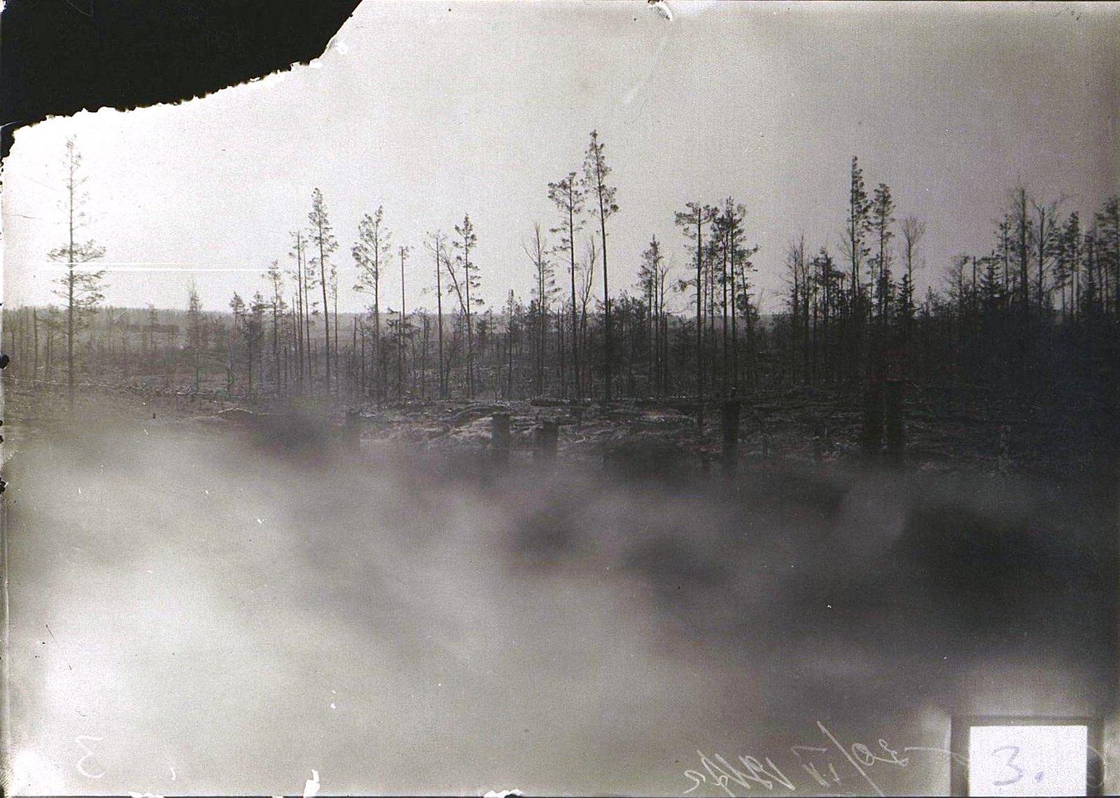 1916. Немецкие окопы на участке «Фердинандова носа» под Двинском (1)