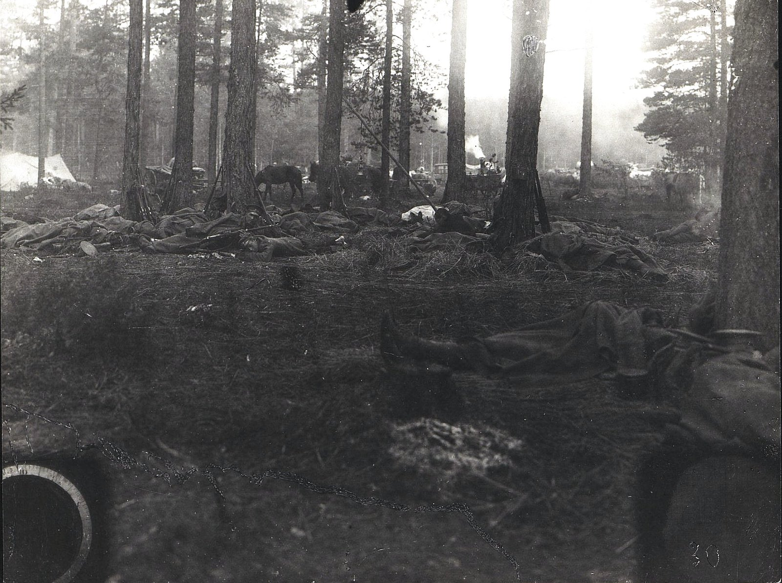1915. Привал Владивостокского крепостного воздухоплавательного отряда по пути отхода от Холма к Брест-Литовску
