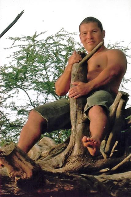 Maui Tree