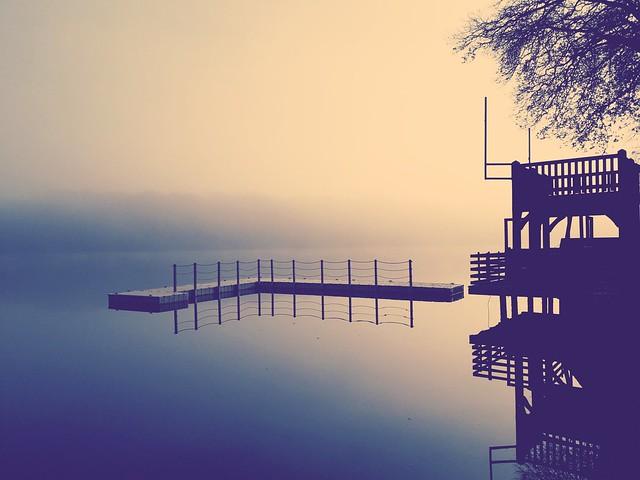 Brume sur l'étang.