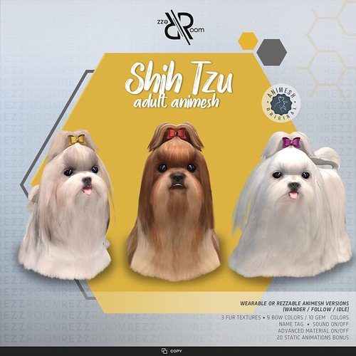 [Rezz Room]  Shih Tzu Adult Animesh (Companion)