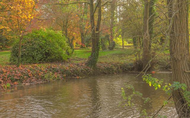 Autumn Walk (1 of 1)