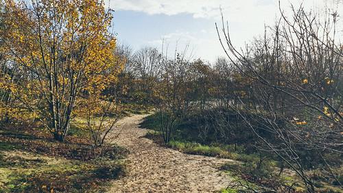 De Oosthoekduinen / De Panne