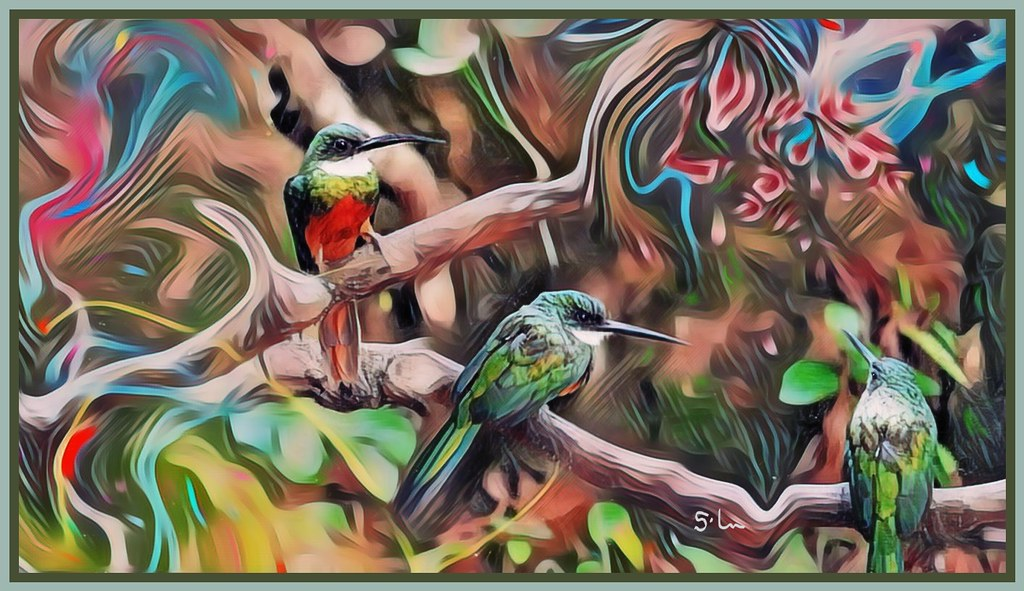 3 birds in the forest - Arirambinhas