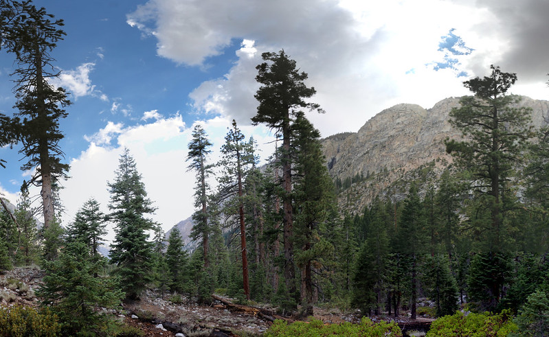 Rain-filled cumulus clouds drifted by above our campsite in Kern Canyon near Whitney Creek on the High Sierra Trail