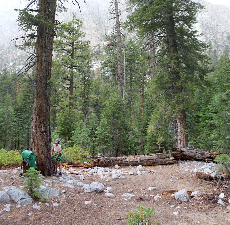We found one small campsite south of Whitney Creek, just uphill from the High Sierra Trail
