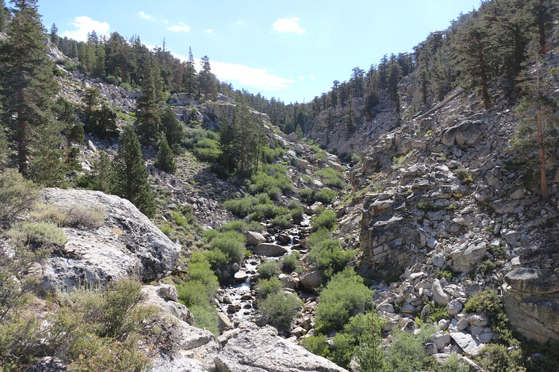 Looking back east up the canyon at Wallace Creek from the High Sierra Trail