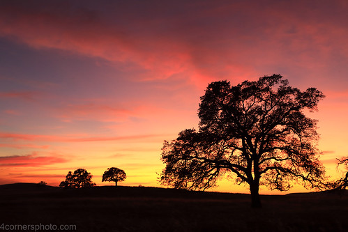 4cornersphoto autumn calaverascounty california centralvalley clouds dusk fall landscape motherlode nature northamerica oak outdoor rural sanjoaquinvalley scenery sky sunset tree unitedstates valleyoak weather valleysprings