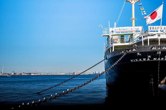 Hikawa-Maru in Yamashita Park : 日本郵船氷川丸