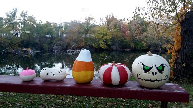 Pumpkins and Halloween (2)