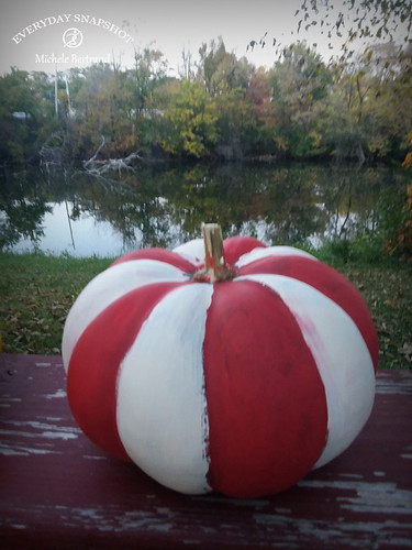 Pumpkins and Halloween (6) | by Everyday Snapshot