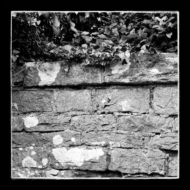 Growth and Bricks