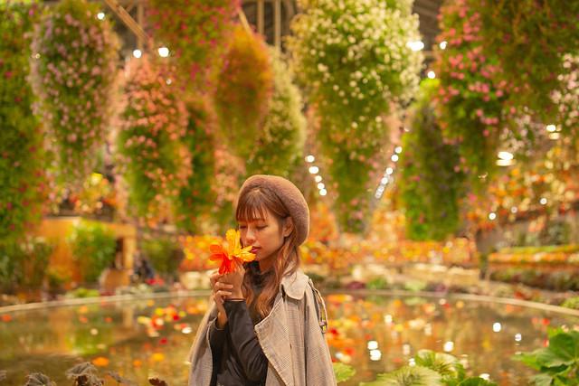 Nabana no Sato Begonia Garden