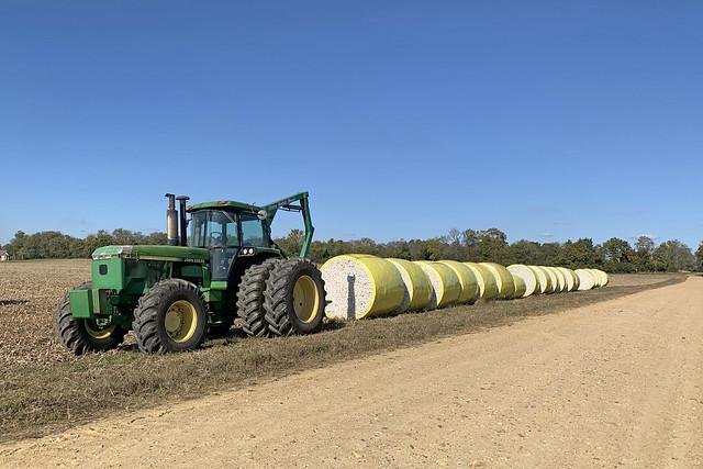 Cotton Harvest-Shirley Plantation-Charles City County Virginia 1521