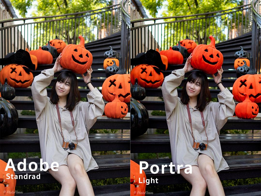 Review Lightroom  Portra Light for sony