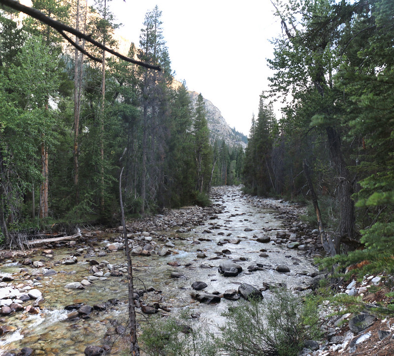 The Kern River in Kern Canyon during August 2020, from the High Sierra Trail