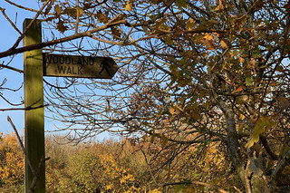 Signpost in the sunshine