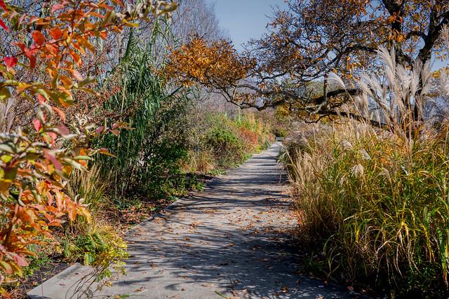 A Stroll Through Ault Park