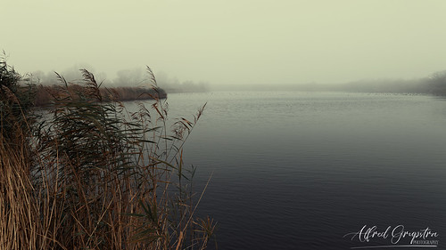 The Silent Black Water