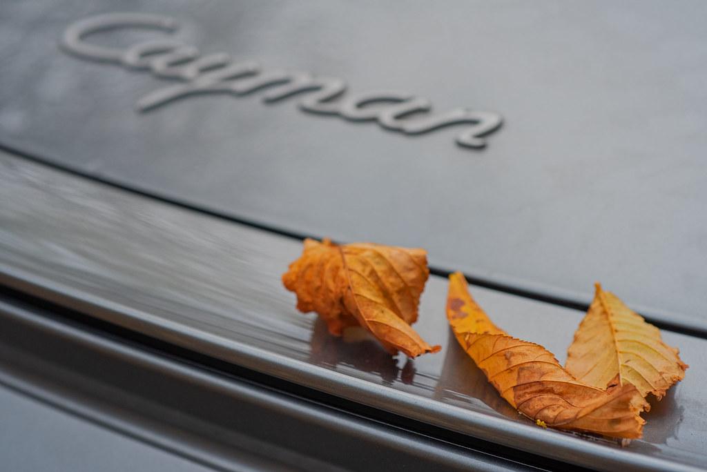 Herbstlaub auf einem Cayman - Leaves on a Porsche Cayman