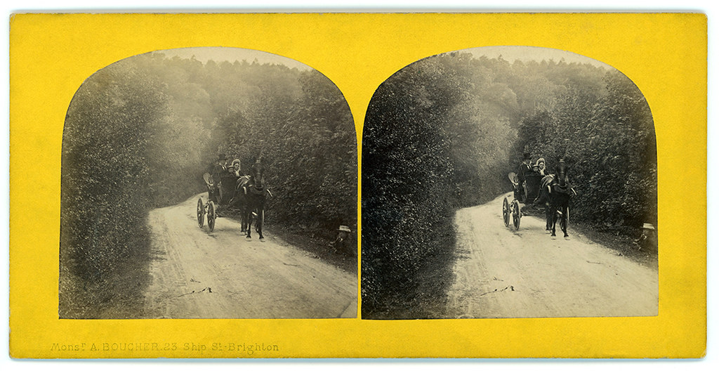 Small Illustration7-Stereo with horse and carriage