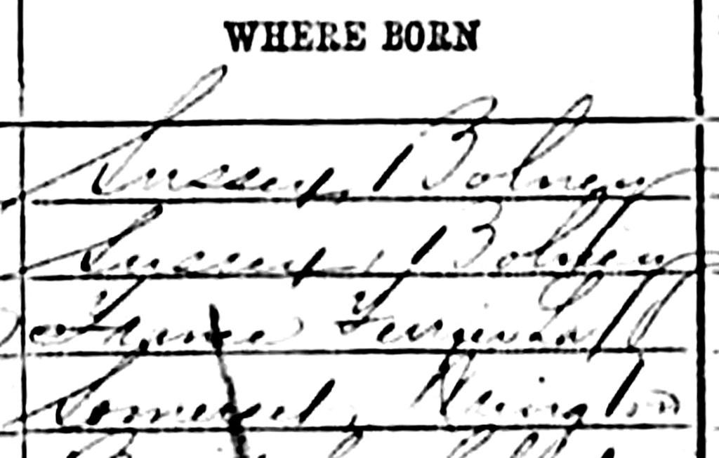 Small Illustration1-1871 census-DT