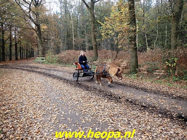 2020-11-11               Maartensdijk       30 Km (24)