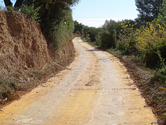 Baix Camp'20 (26-10) - Biciruta Galo de Los Campanarios-Etapa 1 Reus_la Selva 01 Camí del Mig 01 Maspujols_Reus 02