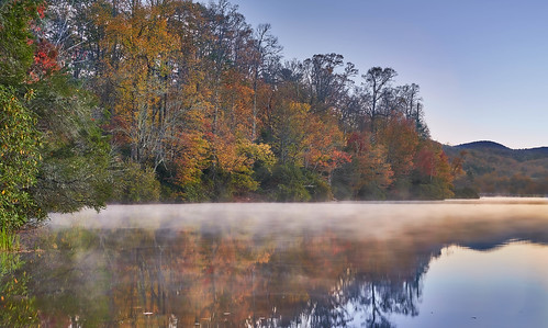 blueridgeparkway leaves northcarolina pricelake