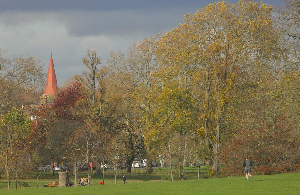 Peckham Rye Park View of SE22