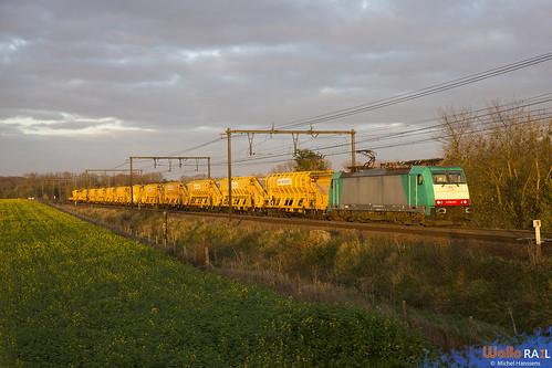 186 216 RTX . E 41589 . Alt-Hoeselt . 12.11.20.