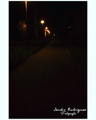 Un paseo hacia ningun lugar
