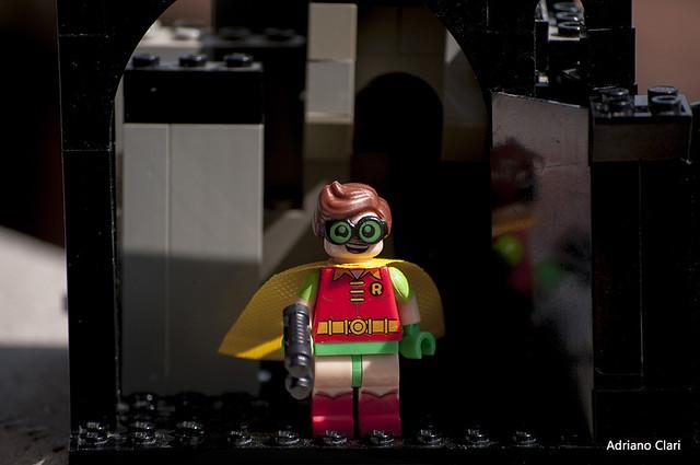 _DSC7149 Robin