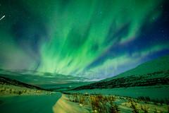 Aurora Borealis / Iceland