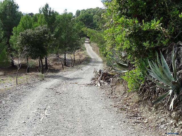 Baix Camp'20 (26-10) - Biciruta Galo de Los Campanarios-Etapa 3 Almoster_ Castellvell del Camp 02 Camí dels Estepans 02