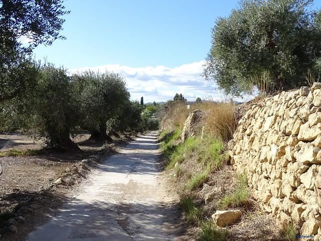 Baix Camp'20 (26-10) - Biciruta Galo de Los Campanarios-Etapa 4 Castellvell del Camp_Maspujols 01 Castellvell del Camp 01 Camí de Monterols 02