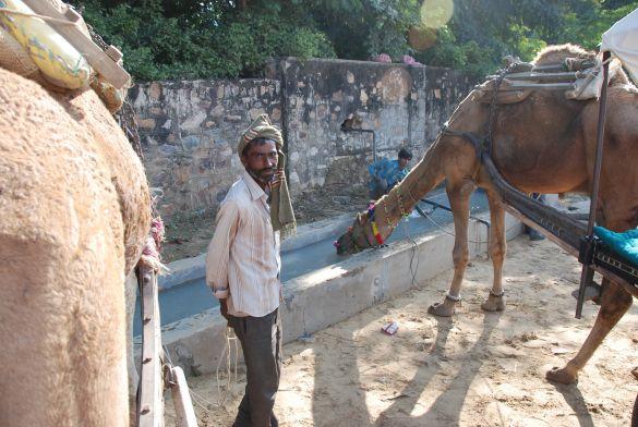 DSC_2139IndiaPushkarCamelFair