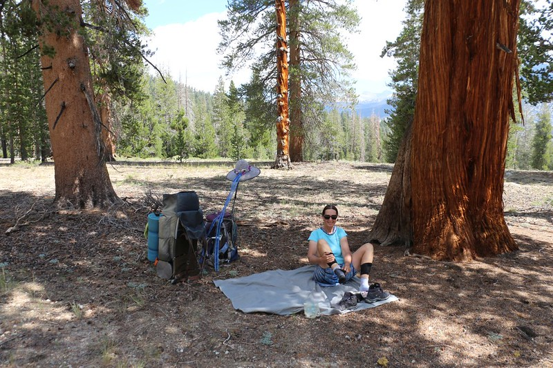 We took an early lunch and a nap in the shade of a Sierra Juniper on the Chagoopa Plateau on the High Sierra Trail