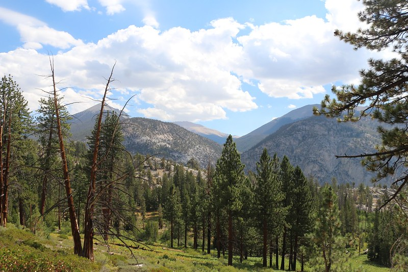 Mount Guyot, Joe Devel, and Anna Mills, looking up Rock Creek, from the High Sierra Trail on the Chagoopa Plateau