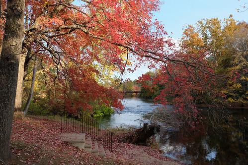 putnam connecticut autumn 2020 foliage quinebaugriver river landscape windhamcounty
