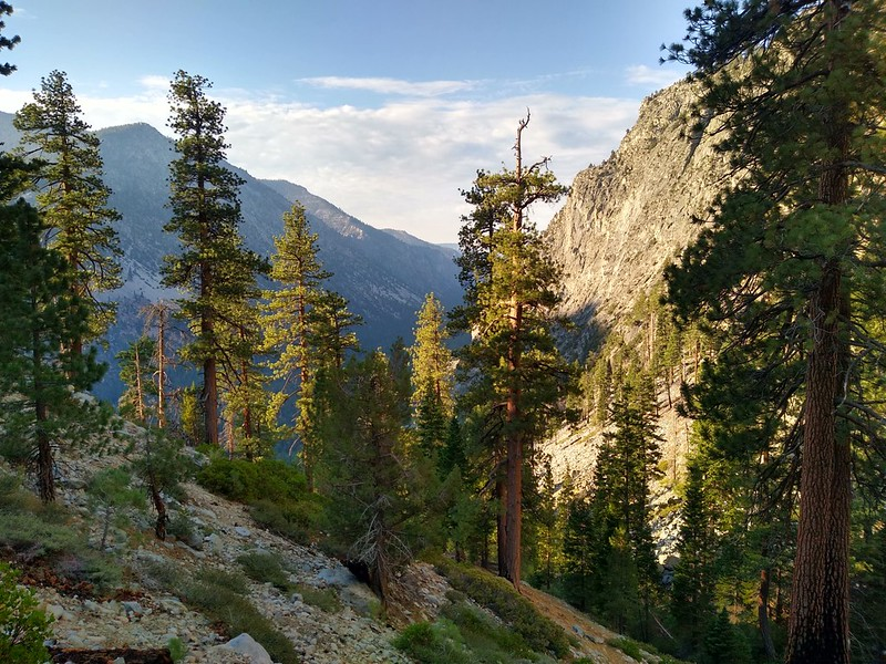 We finally climbed high enough to enter the zone of morning sun, from the High Sierra Trail near Funston Creek