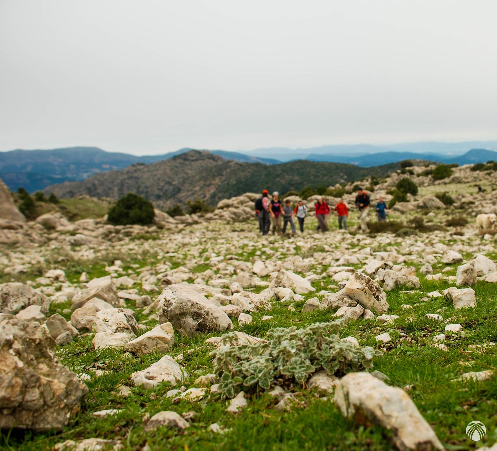 Terreno lapiaz de la zona de cumbres