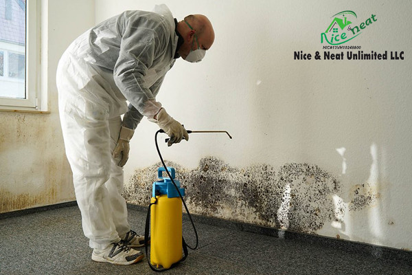 HVAC sanitizing and disinfectant
