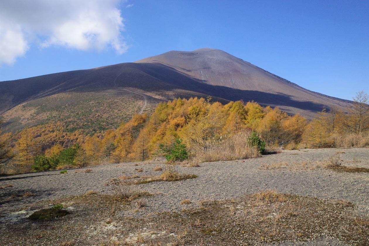 小浅間山登山 落葉松の紅葉と浅間山