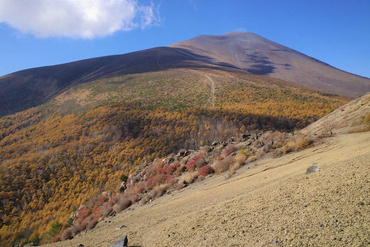 小浅間山ハイキング 登山道から眺める浅間山と紅葉