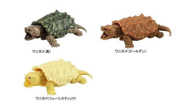 再現鱷龜精人的咬合力!GASHAPON大好評第三彈「烏龜03」推出鱷龜主題轉蛋