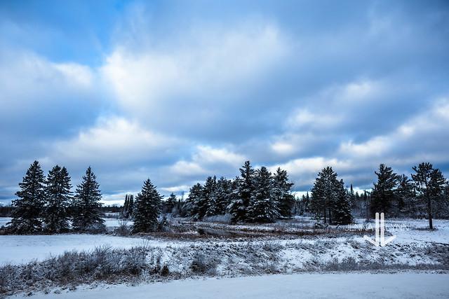 Winter (E X P L O R E D   11.13.20)